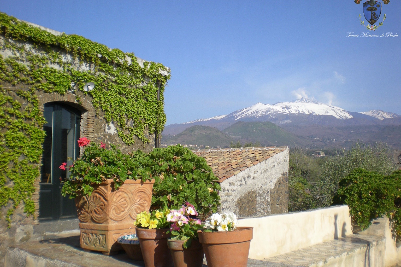 ETNA AND WINE TASTING